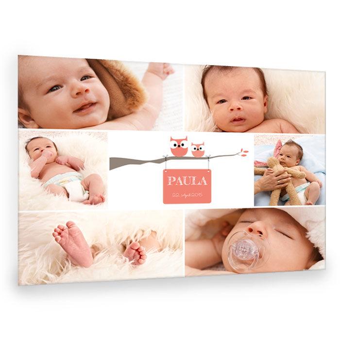 Süße Baby Fotocollage mit Eulen online selbst gestalten